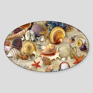 Seashells And Starfish Sticker