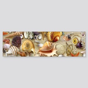 Seashells And Starfish Bumper Sticker