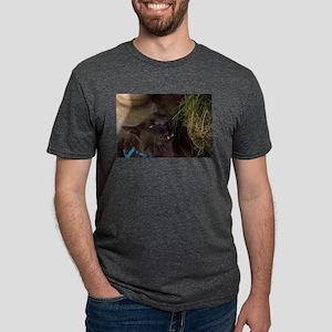Kitty Gnaw T-Shirt