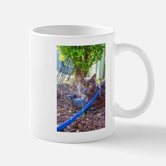 Rat and Cat Mugs