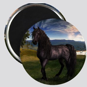 Freisian Horse Magnets