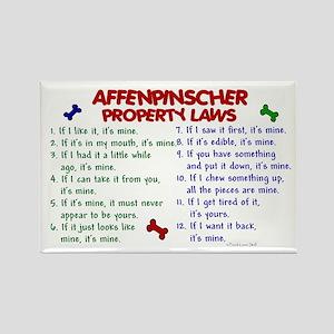 Affenpinscher Property Laws Rectangle Magnet