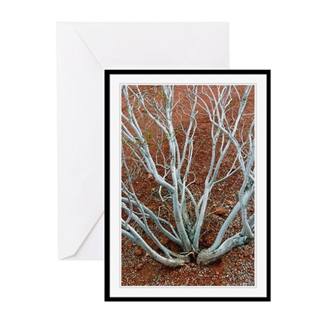 Desert Tree #2 Cards (6)