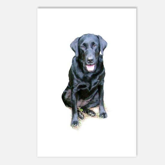 Black Lab Dog Postcards (Package of 8)