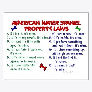 American Water Spaniel Property Laws 2 Small Poste