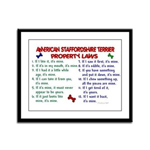 American Staffordshire Terrier Property Laws 2 Fra