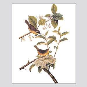 Maryland Yellowthroat Birds Vintage Small Poster