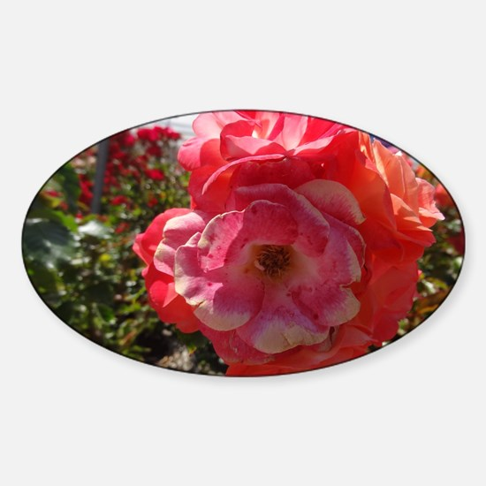 Pink And Orange Flower Decal
