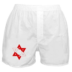 https://i3.cpcache.com/product/189296978/scuba_flag_star_of_david_boxer_shorts.jpg?side=Front&color=White&height=240&width=240