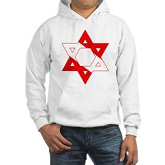 https://i3.cpcache.com/product/189296999/scuba_flag_star_of_david_hoodie.jpg?color=White&height=240&width=240
