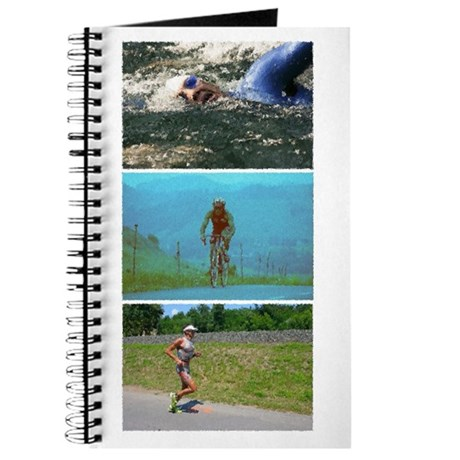 SOLO TRIATHLON TRIPTYCH PAINTING Journal