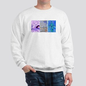 SOLO TRIATHLON TRIPTYCH PAINTING 2 Sweatshirt
