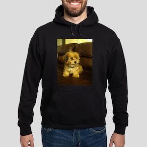 Copper as a baby Sweatshirt