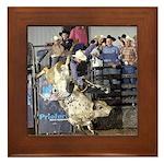 Shippy Rodeo Bulls Framed Tile