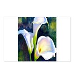 calla lilly art deco flower print Postcards (Packa