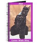Zion's Journal
