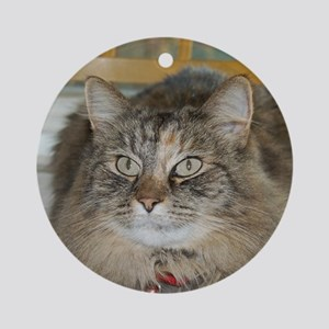 Maine Coon cat w/ eyeliner Ornament (Round)