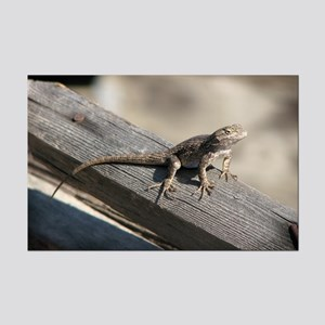 Helaine's Lizard Mini Poster Print
