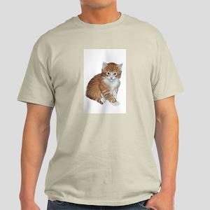 Orange Tabby Kitten Ash Grey T-Shirt