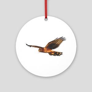 Northern Harrier Ornament (Round)