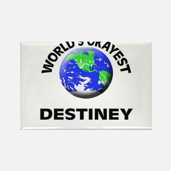 World's Okayest Destiney Magnets