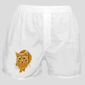 Orange Cat Boxer Shorts