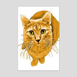 Orange Cat Mini Poster Print