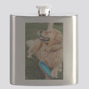 Nala the golden retriever playing on lawn wi Flask