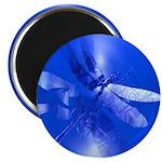 Blue Dragonfly 2.25