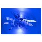 Blue Dragonfly Large Poster