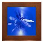 Blue Dragonfly Framed Tile