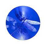 Blue Dragonfly 3.5