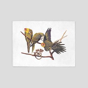 Three Parakeets from Audubon's Birds of America 5'
