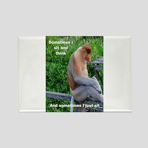 Probiscis Monkey Maybe Thinking Magnets