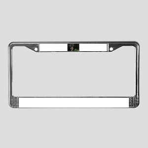 black bear License Plate Frame