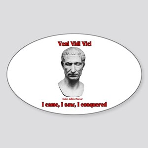 Vini Vidi Vici I Came I Saw I Conquered Sticker (O