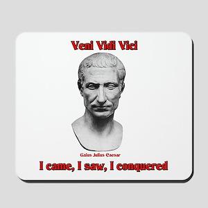Vini Vidi Vici I Came I Saw I Conquered Mousepad