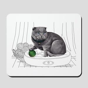 Scottish Fold with line drawn Background Mousepad