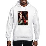 Accolade / Eng Springer Hooded Sweatshirt