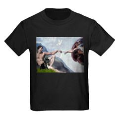 Creation / French Bull T