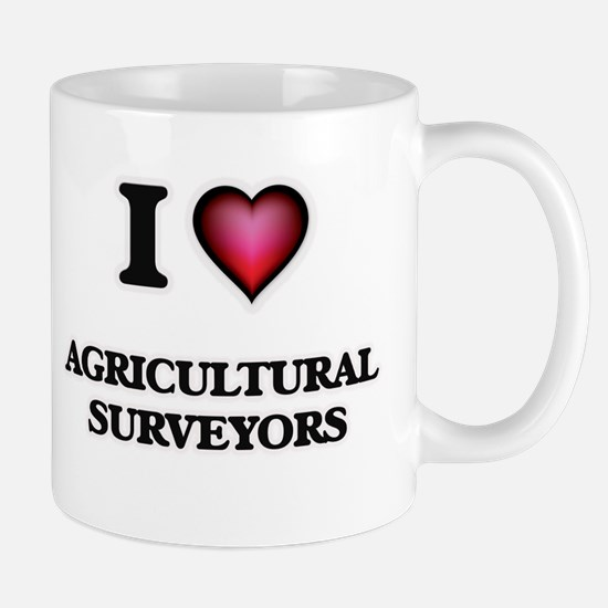 I love Agricultural Surveyors Mugs
