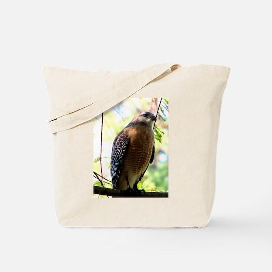Cute Birds of prey Tote Bag