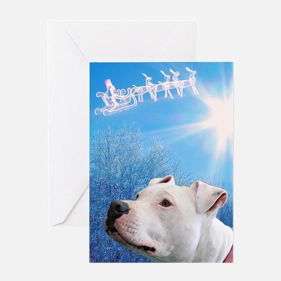 Cute Pit bull christmas Greeting Card