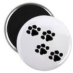 Pet Paw Prints Magnet