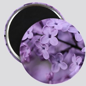 Lilac Magnet