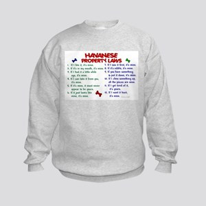 Havanese Property Laws 2 Kids Sweatshirt