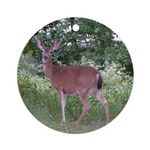 Doe in the Shade Ornament (Round)