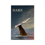 DARE/WILD SIDE WHALE Rectangle Magnet (100 pack)
