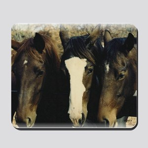 Horse and Pony Lover Mousepad