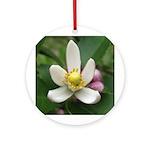 Lemon Blossom Ornament (Round)